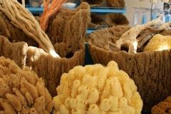 Rhodos sponge